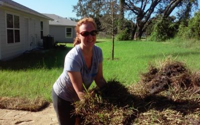 3 ways to make your home environmentally friendly this Earth Day