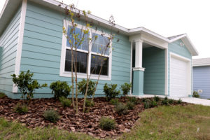 A blue house with landscaping in the front yard.